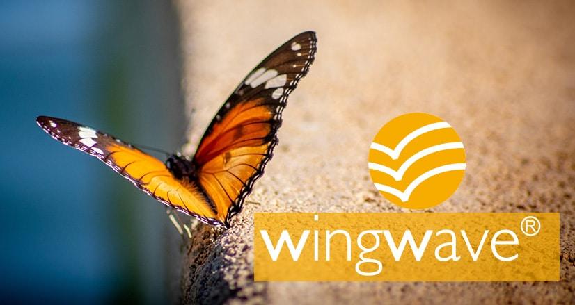 WingWave Seminar
